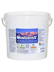 MONTEROSA+